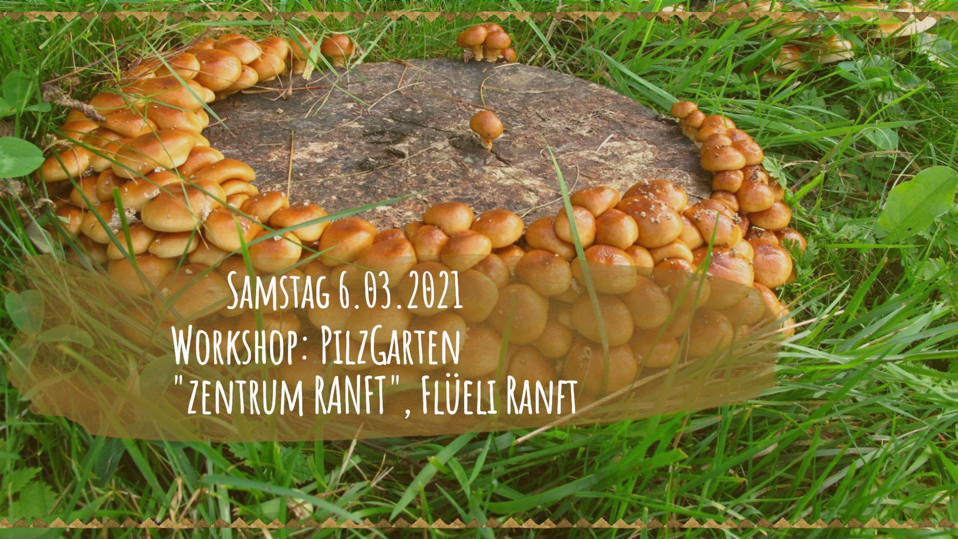 WS_Pilzgarten_RANFT_03_06