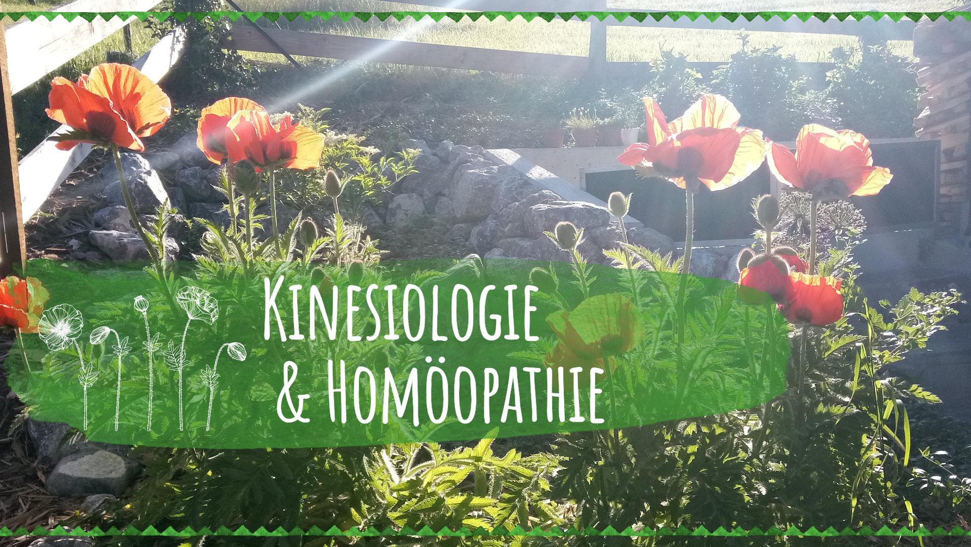 kinesiologie_homoeopathie