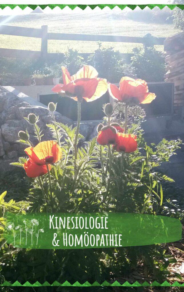 kinesiologie_homoeopathie_mobile